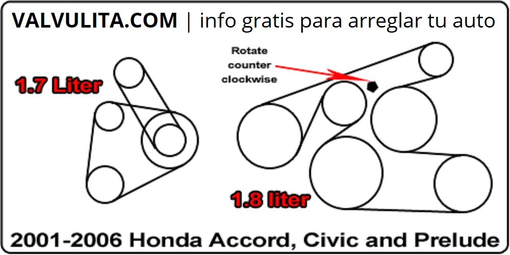 diagrama de la correa del alternador